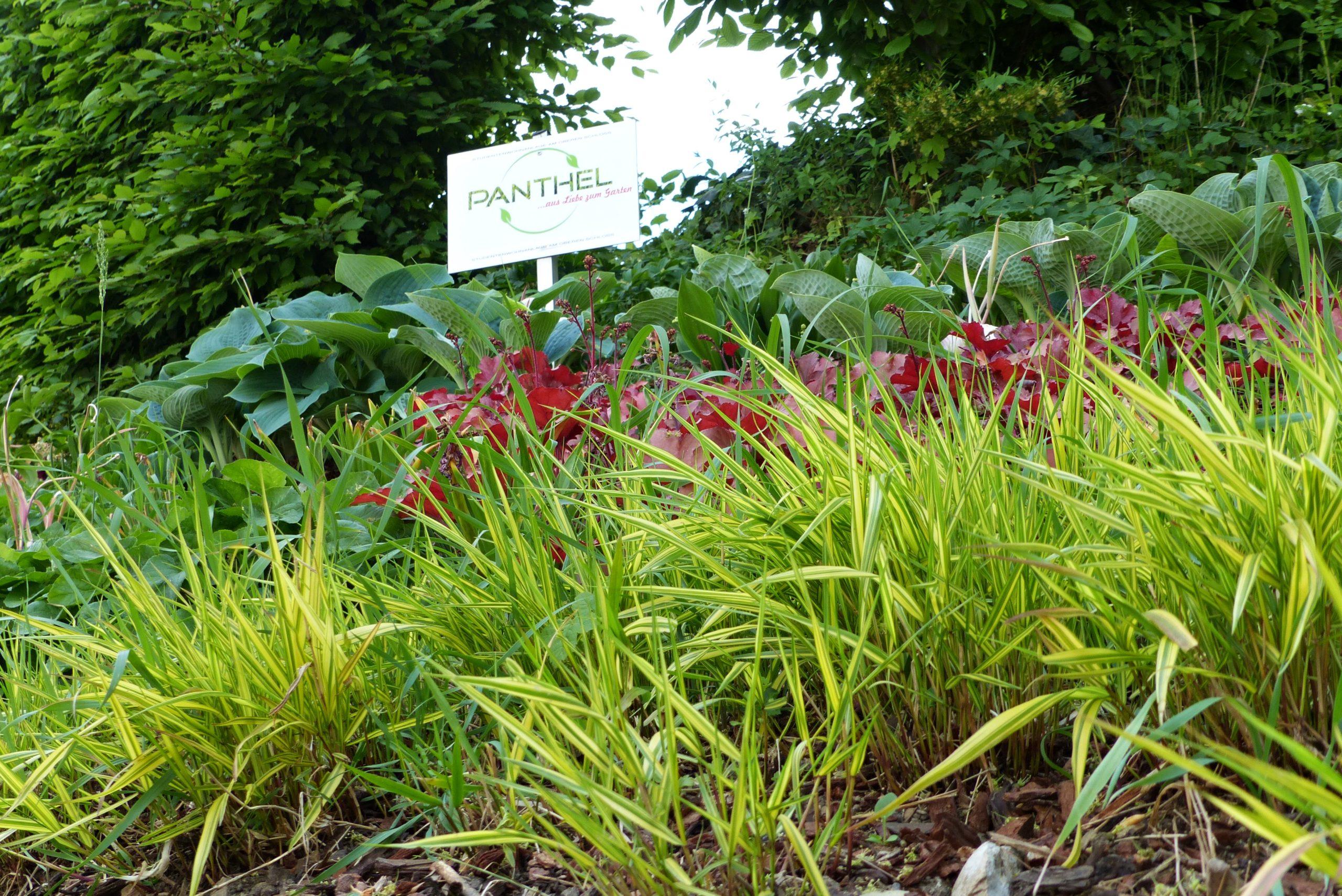 Garten- und Landschaftsbau Panthel